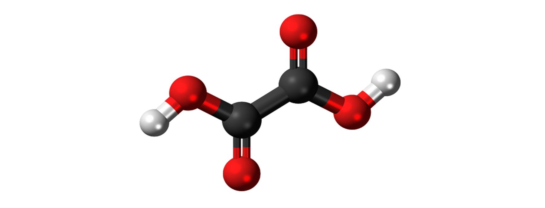 Acide oxalique et traitement du varroa
