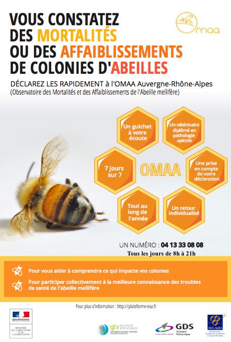 Observatoire des mortalités massives d'abeilles
